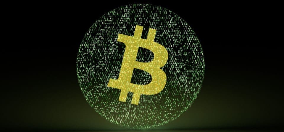 Companion maids accepts bitcoin
